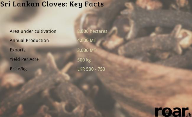 Cloves. Image credit: Style Craze