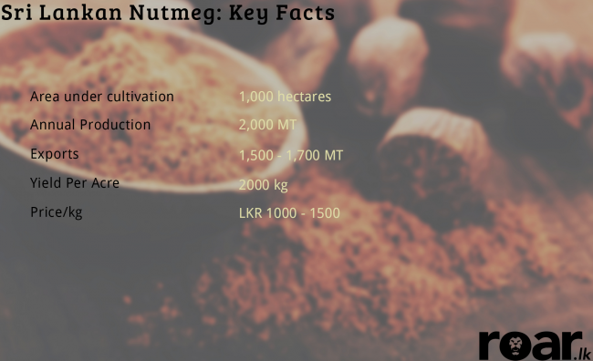 Nutmeg. Image credit: Earth Foods
